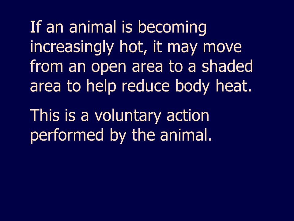 If an animal is becoming increasingly hot, it may move from an open area to a shaded area to help reduce body heat.
