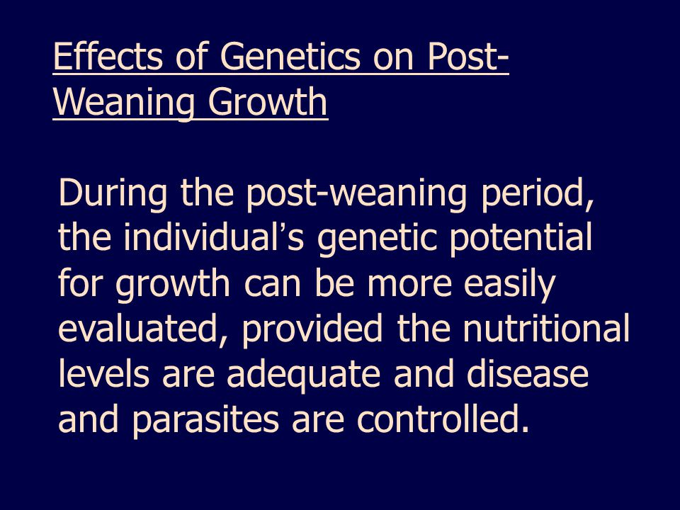 Effects of Genetics on Post-Weaning Growth