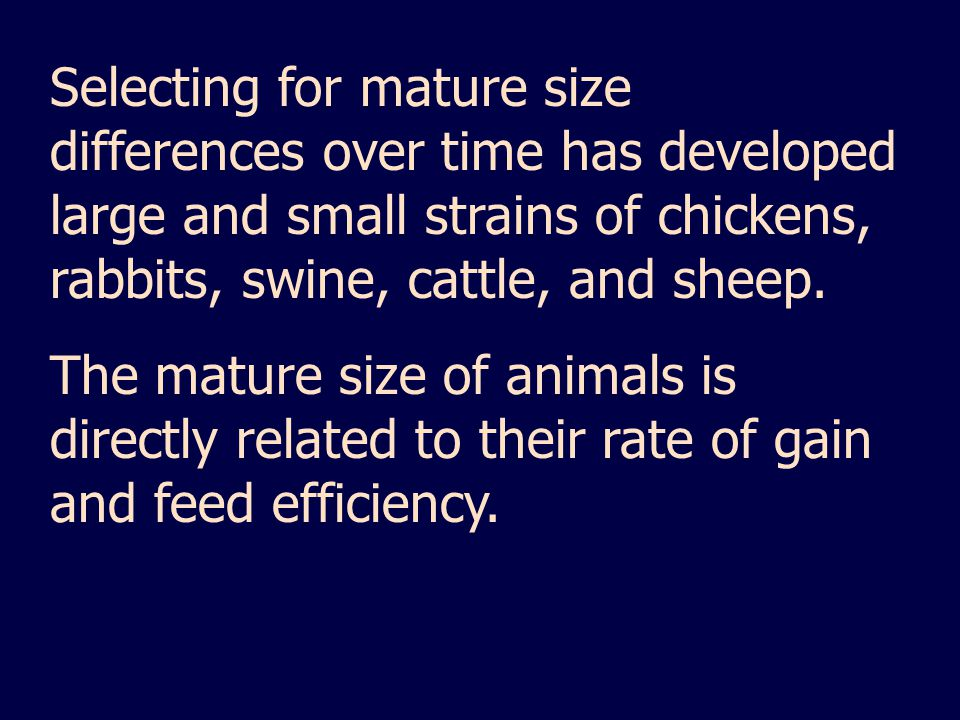 Selecting for mature size differences over time has developed large and small strains of chickens, rabbits, swine, cattle, and sheep.