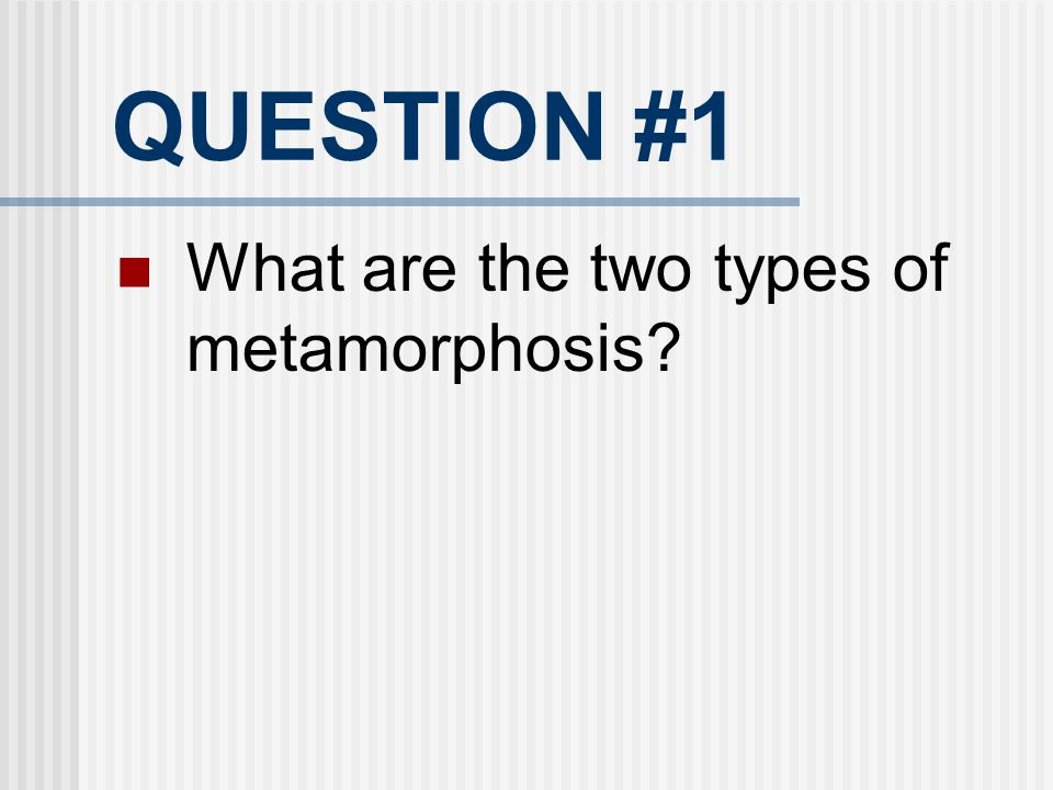 QUESTION #1 What are the two types of metamorphosis 15