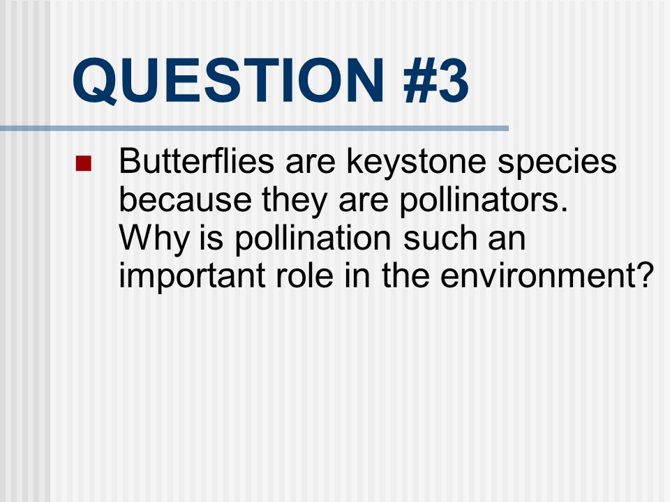 QUESTION #3 Butterflies are keystone species because they are pollinators. Why is pollination such an important role in the environment