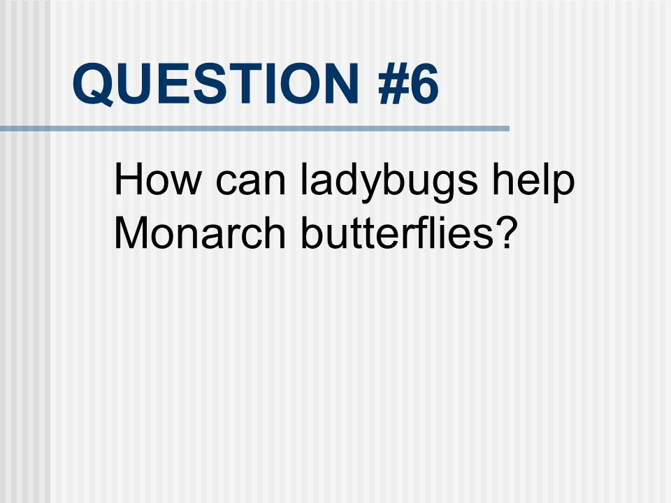 QUESTION #6 How can ladybugs help Monarch butterflies 20