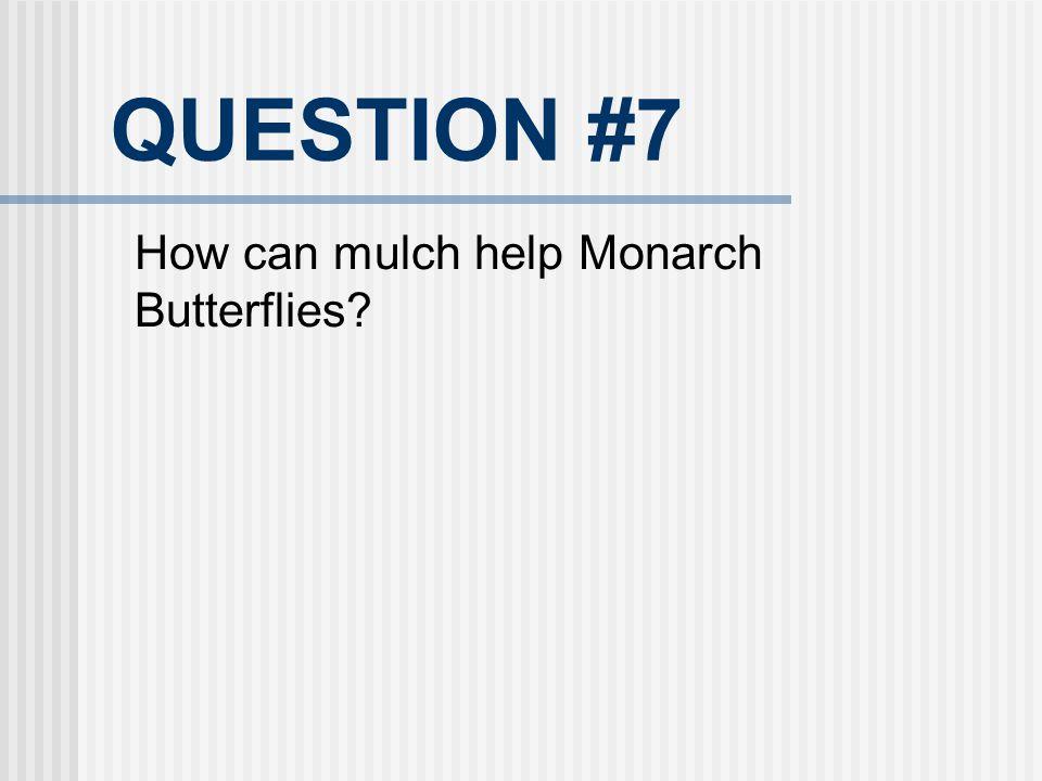 QUESTION #7 How can mulch help Monarch Butterflies 21