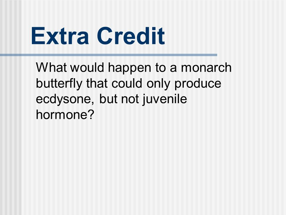 Extra Credit What would happen to a monarch butterfly that could only produce ecdysone, but not juvenile hormone