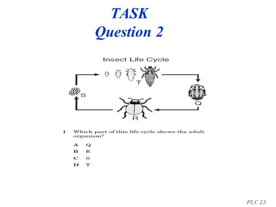 TASK Question 2 PLC 23