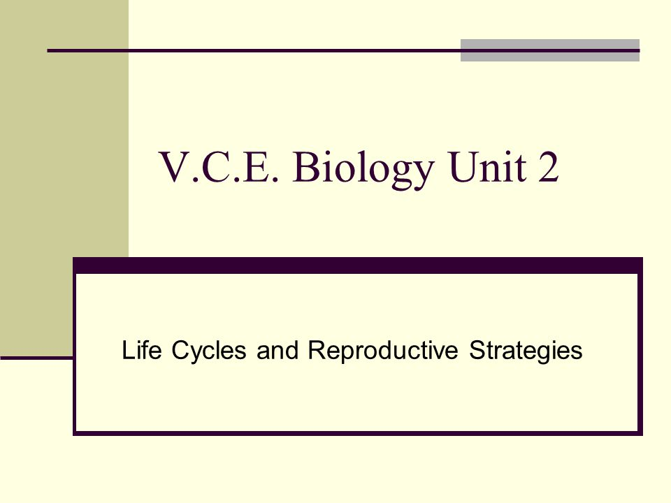 Life Cycles and Reproductive Strategies