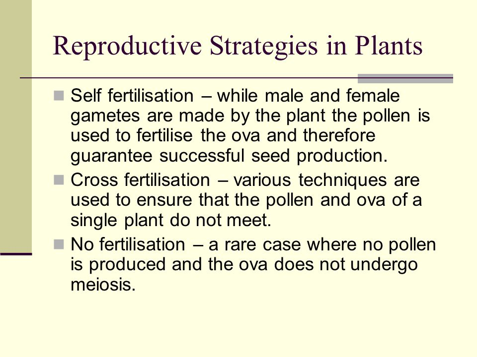 Reproductive Strategies in Plants
