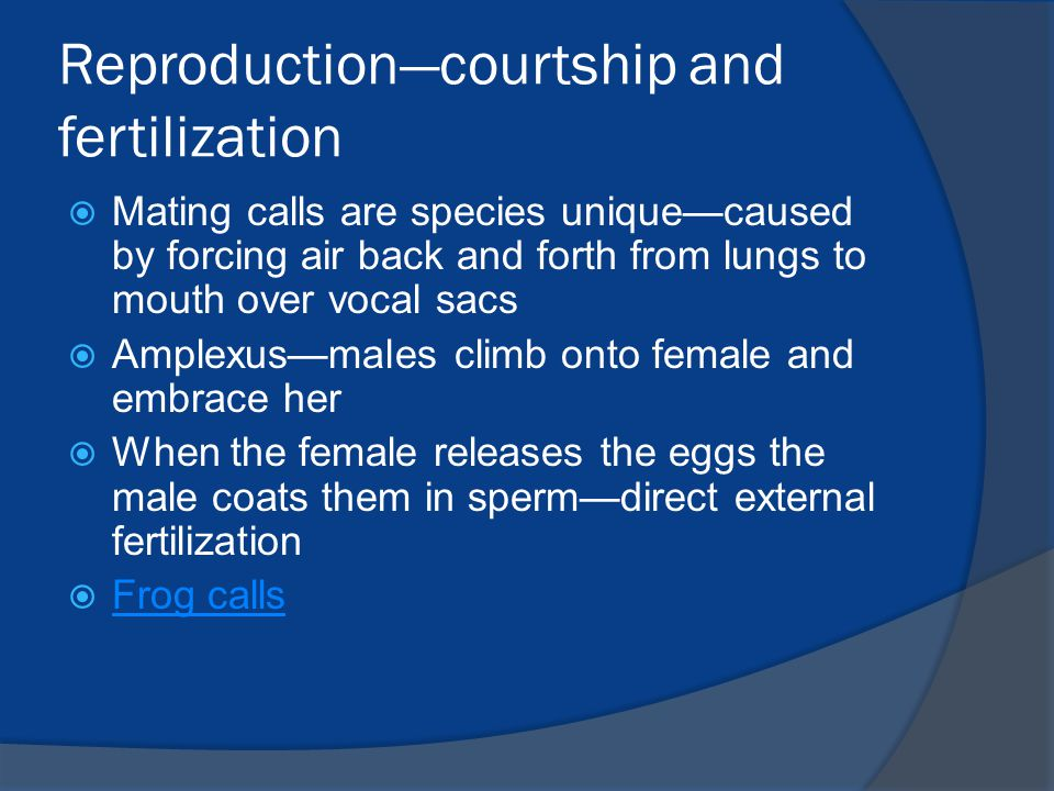 Reproduction—courtship and fertilization