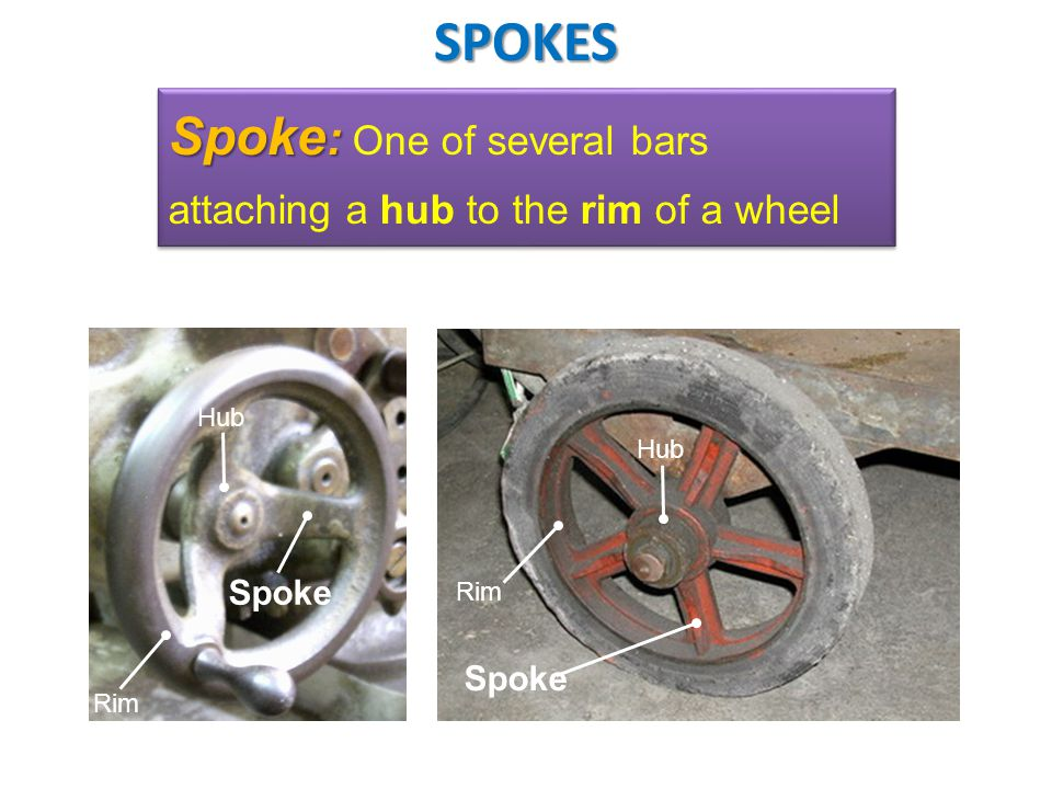 SPOKES Spoke: One of several bars attaching a hub to the rim of a wheel Hub Hub Spoke Rim Spoke Rim
