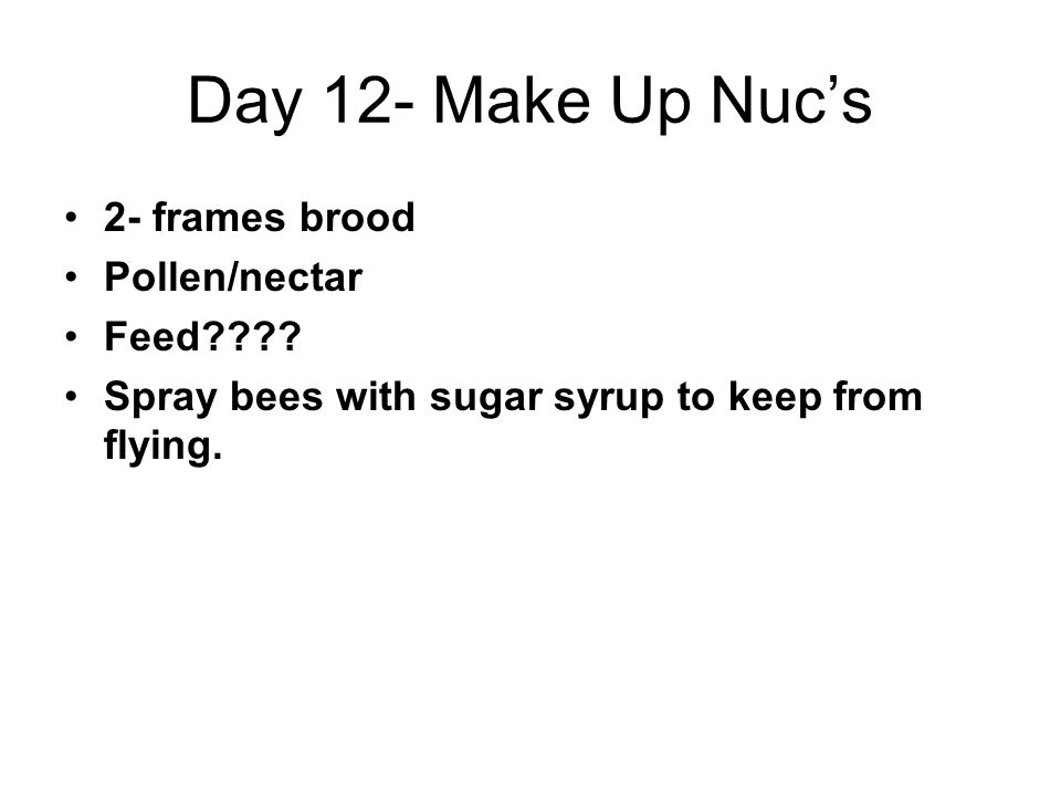 Day 12- Make Up Nuc's 2- frames brood Pollen/nectar Feed