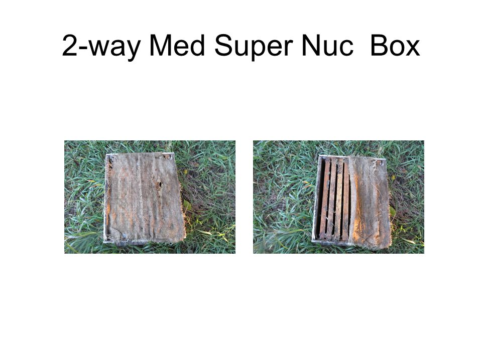 2-way Med Super Nuc Box