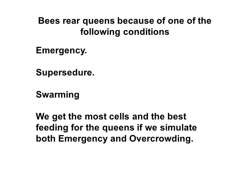 Bees rear queens because of one of the following conditions