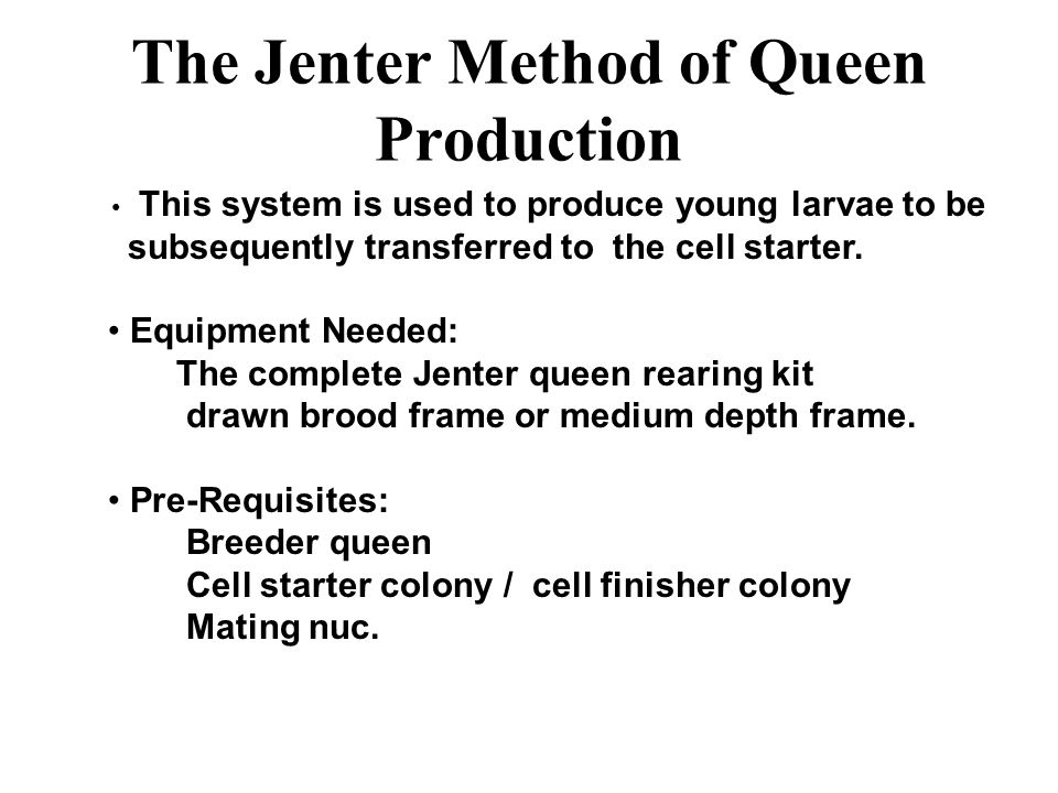 The Jenter Method of Queen Production