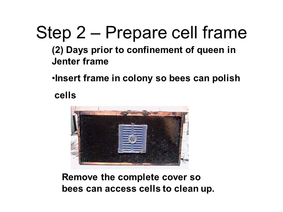 Step 2 – Prepare cell frame