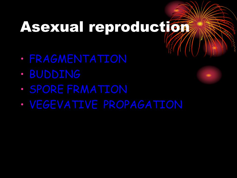 Asexual reproduction FRAGMENTATION BUDDING SPORE FRMATION