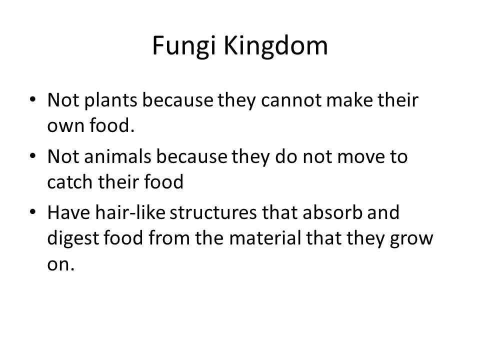 Fungi Kingdom Not plants because they cannot make their own food.
