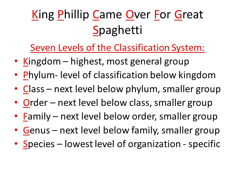 King Phillip Came Over For Great Spaghetti