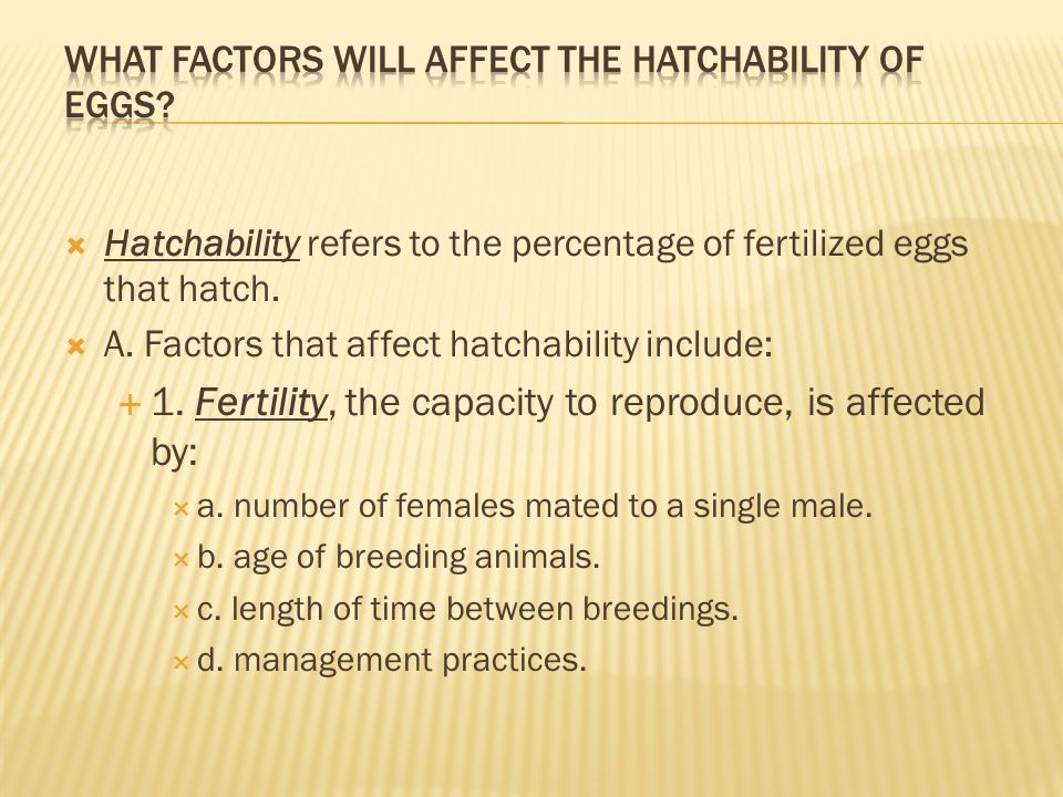 What factors will affect the hatchability of eggs