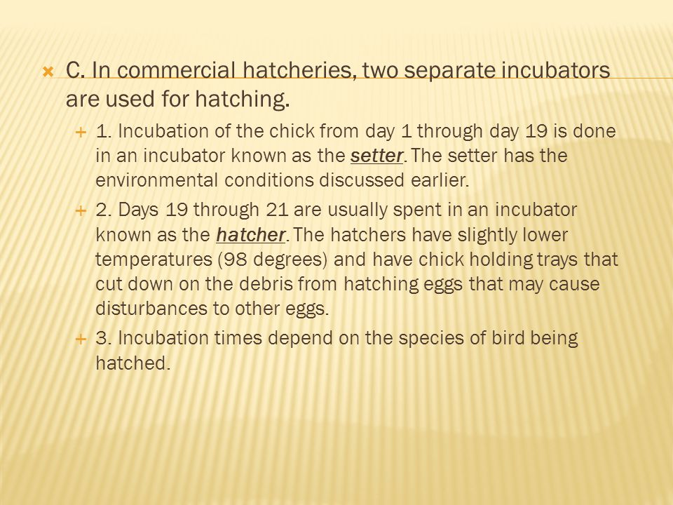 C. In commercial hatcheries, two separate incubators are used for hatching.