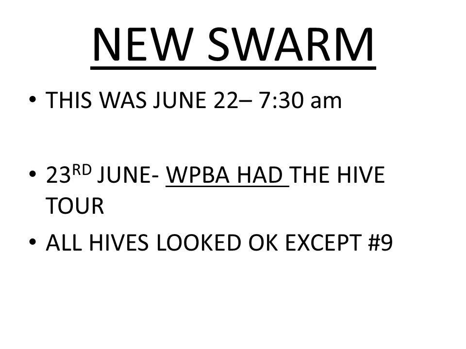 NEW SWARM THIS WAS JUNE 22– 7:30 am 23RD JUNE- WPBA HAD THE HIVE TOUR