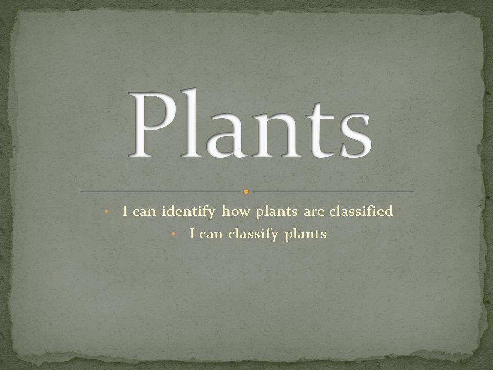 I can identify how plants are classified I can classify plants