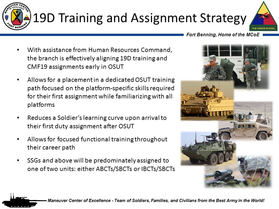 19D Training and Assignment Strategy