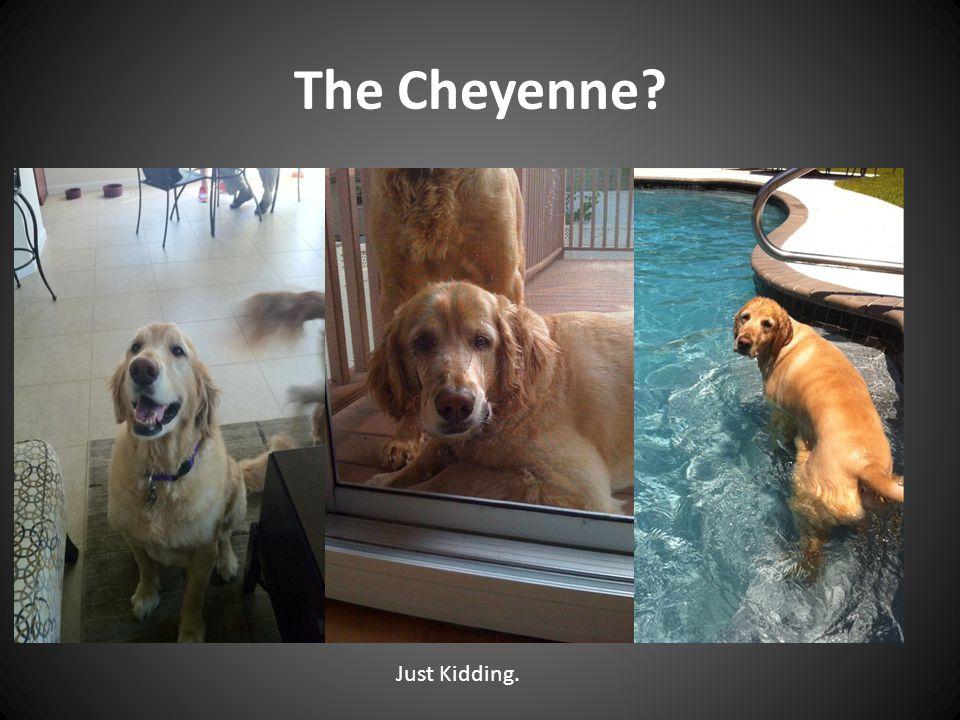 The Cheyenne Just Kidding.