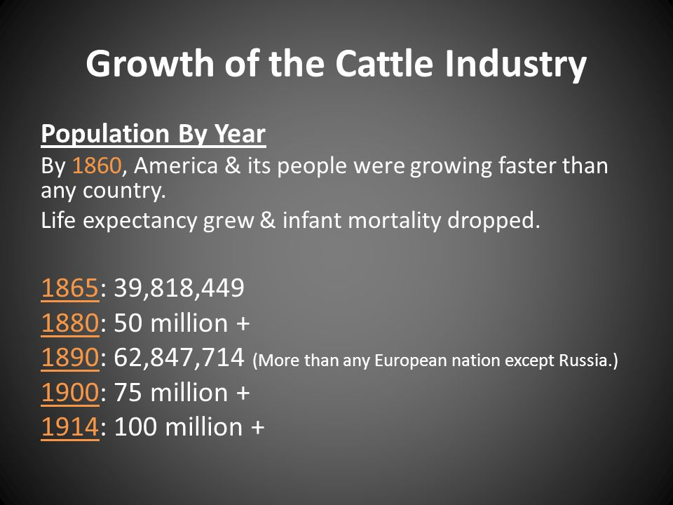 Growth of the Cattle Industry