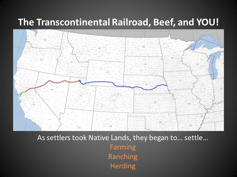 The Transcontinental Railroad, Beef, and YOU!