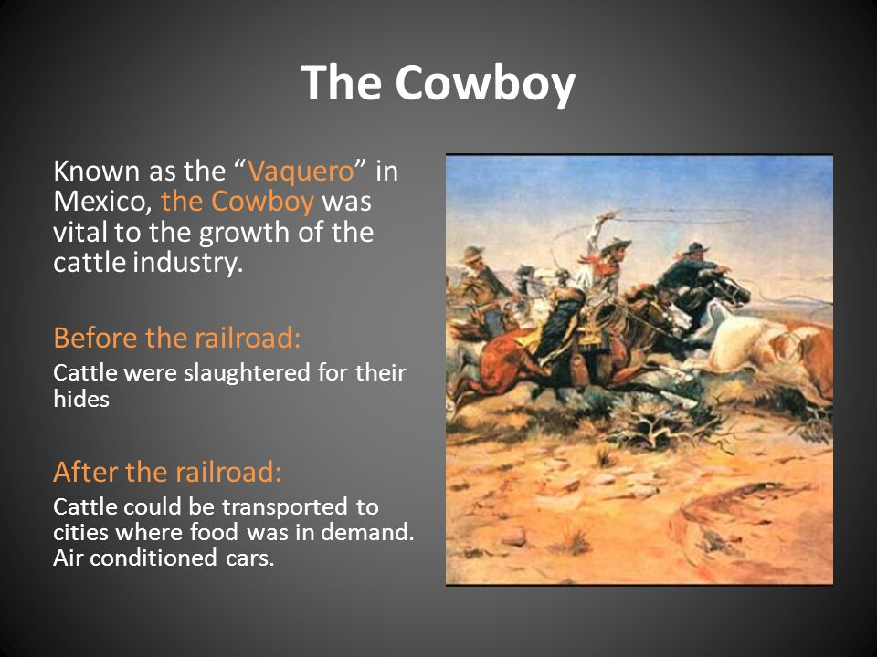 The Cowboy Known as the Vaquero in Mexico, the Cowboy was vital to the growth of the cattle industry.