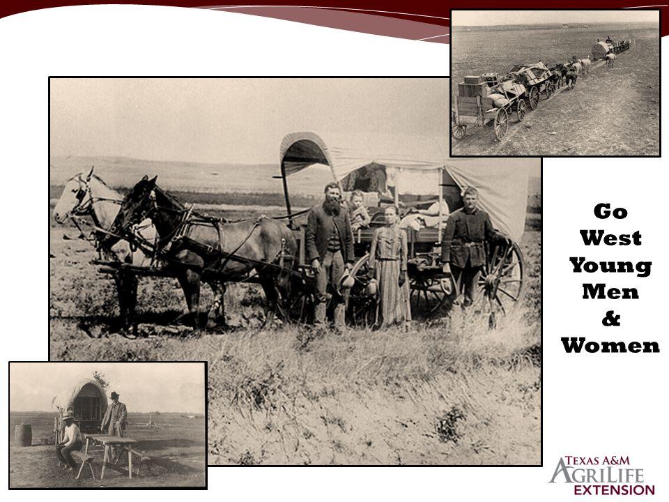 Go West Young Men & Women