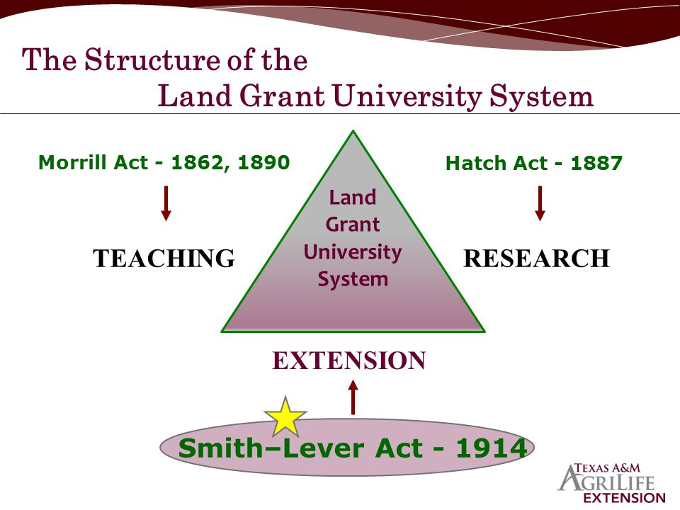 The Structure of the Land Grant University System