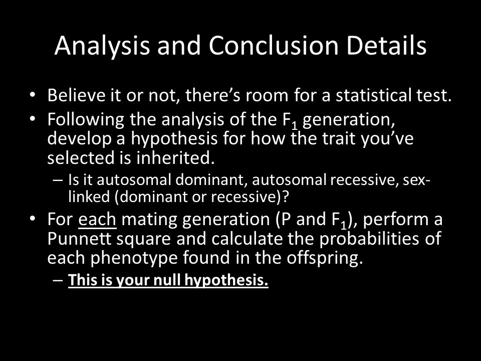 Analysis and Conclusion Details