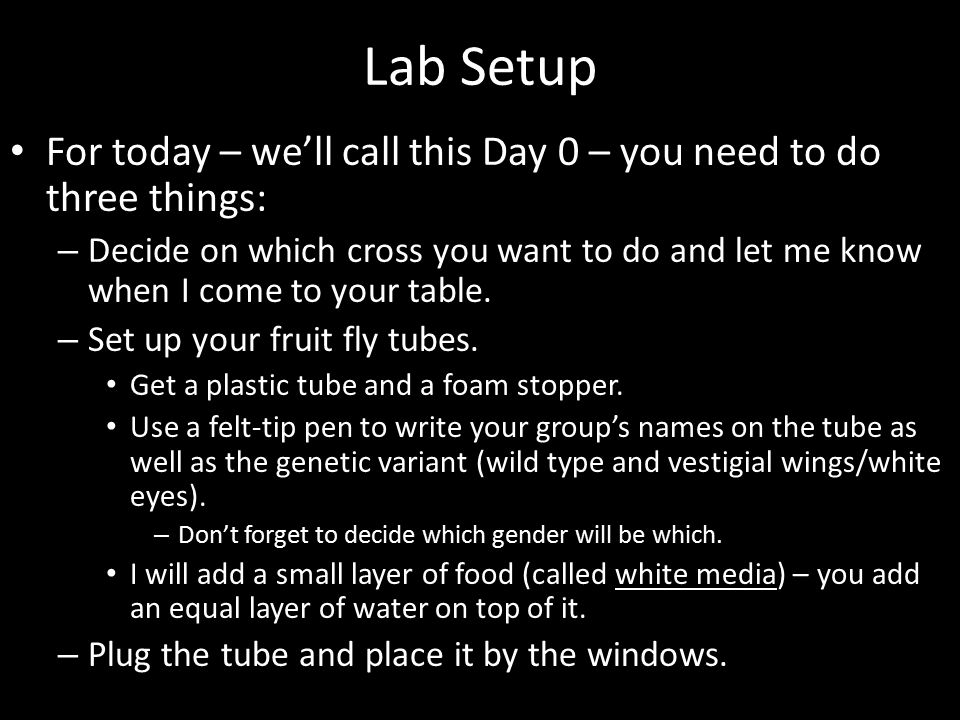 Lab Setup For today – we'll call this Day 0 – you need to do three things: