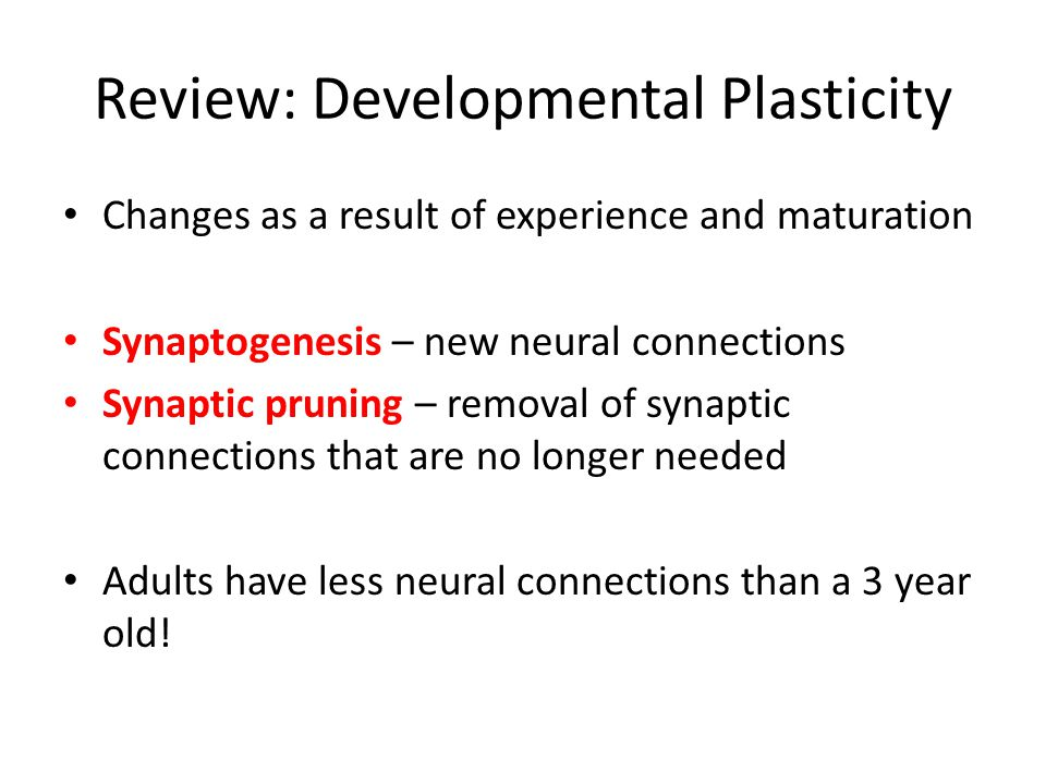 Review: Developmental Plasticity