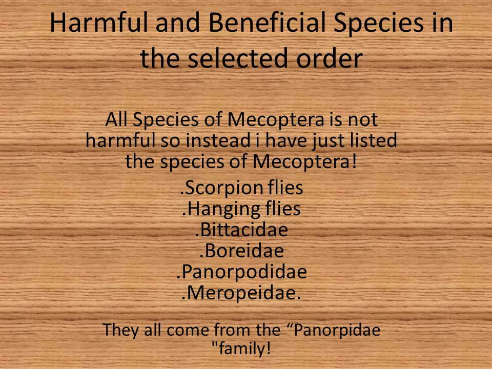 Harmful and Beneficial Species in the selected order
