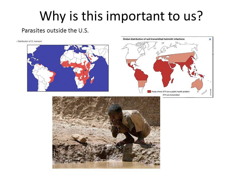 Parasites outside the U.S.