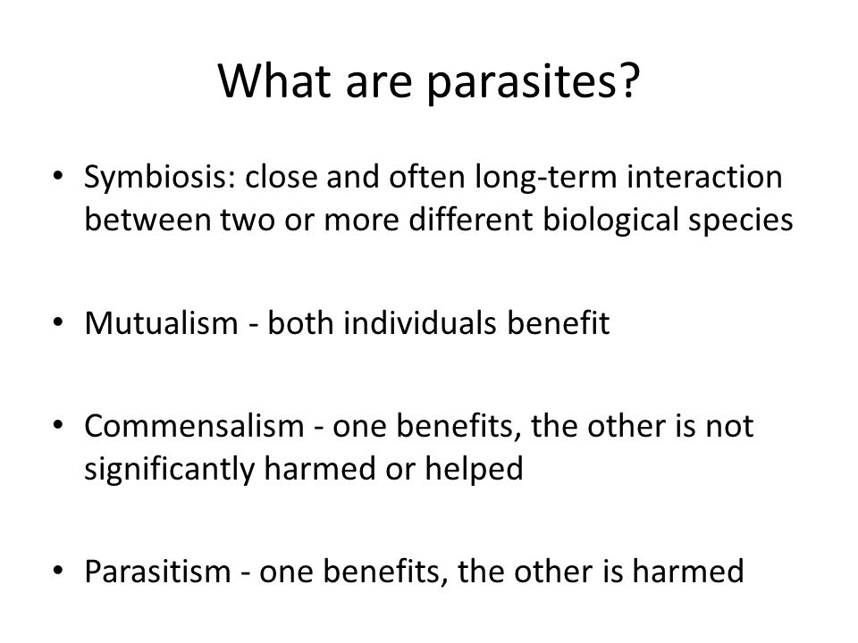 What are parasites Symbiosis: close and often long-term interaction between two or more different biological species.