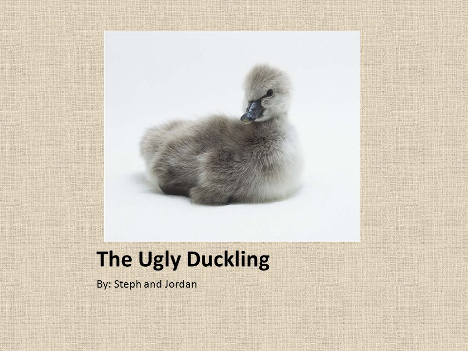 The Ugly Duckling By: Steph and Jordan