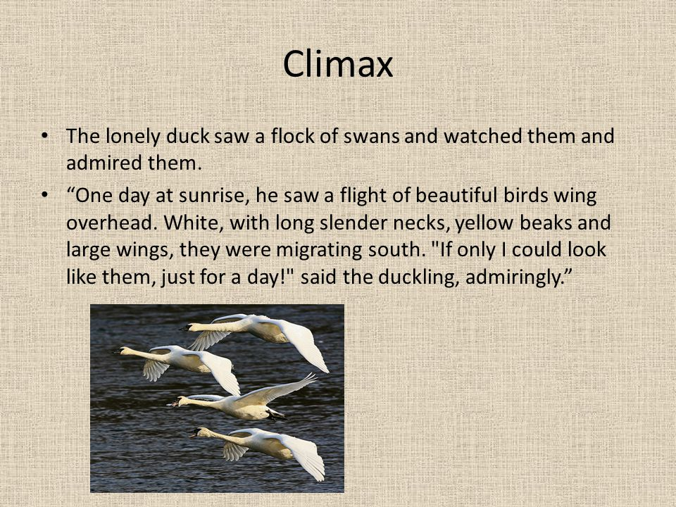 Climax The lonely duck saw a flock of swans and watched them and admired them.