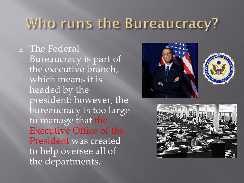 Who runs the Bureaucracy