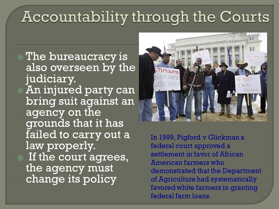 Accountability through the Courts