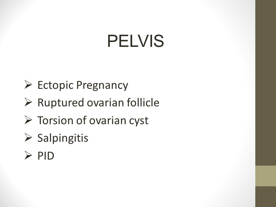 PELVIS Ectopic Pregnancy Ruptured ovarian follicle