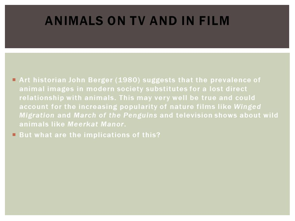 Animals on TV and in film