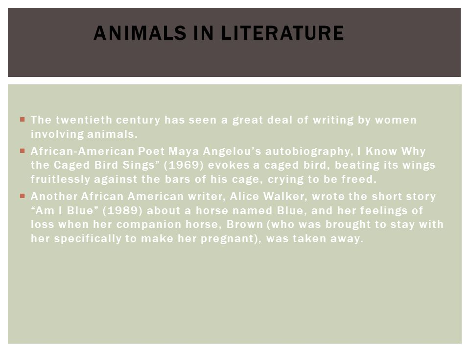 Animals in Literature The twentieth century has seen a great deal of writing by women involving animals.