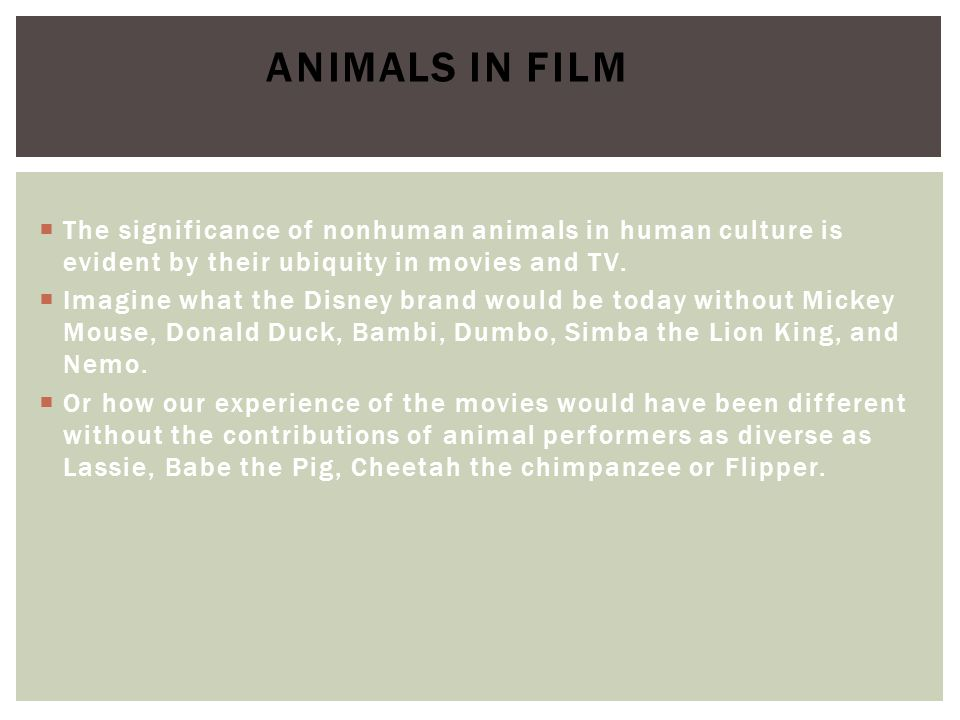 Animals in Film The significance of nonhuman animals in human culture is evident by their ubiquity in movies and TV.