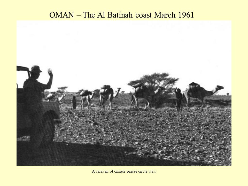 OMAN – The Al Batinah coast March 1961