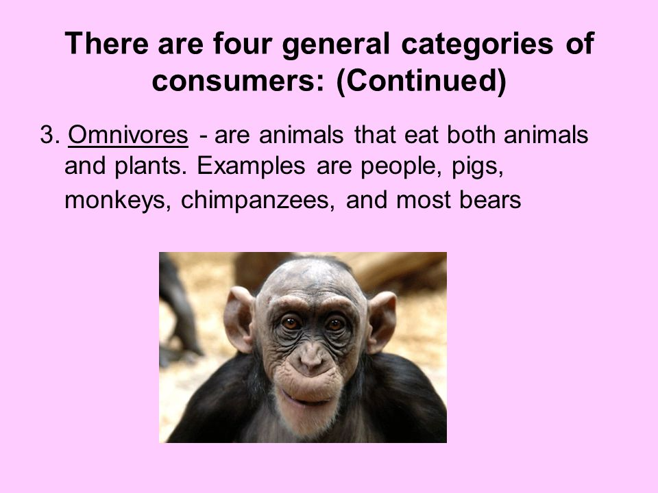 There are four general categories of consumers: (Continued)