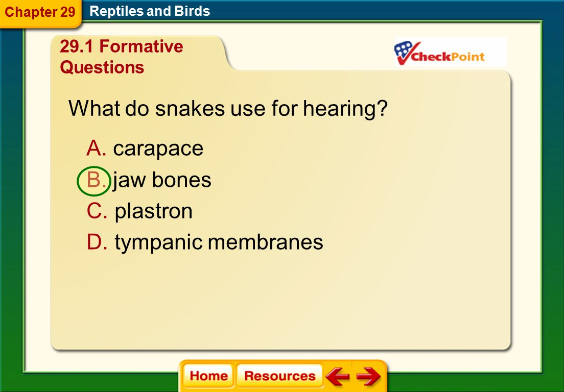 What do snakes use for hearing