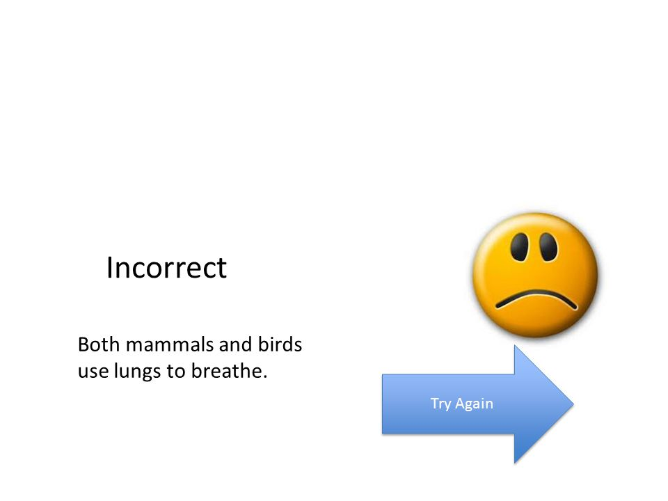 Incorrect Both mammals and birds use lungs to breathe. Try Again